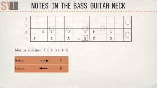 How to find all the notes on the bass guitar in 5 minutes