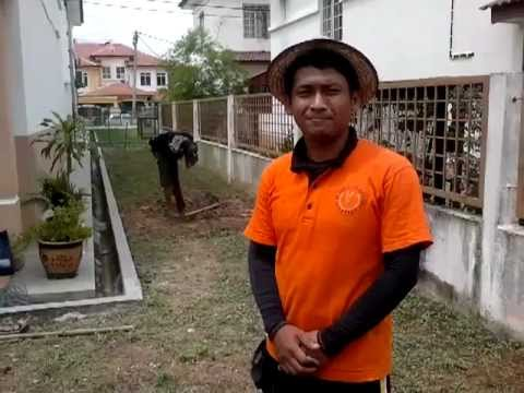 Video Tanam Rumput Mutiara Part 1