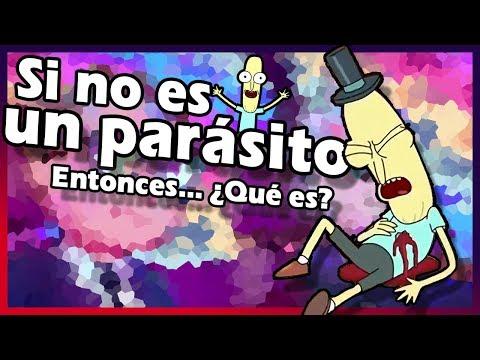 Protozoan parasites flagellates
