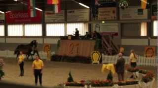 preview picture of video 'Fohlenauktion Luhmühlen ( Hannoveraner der Pferdezuchtvereine Lüneburg - Nord GbR )'
