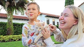 kids reaction to the new kitten!!! (travel vlog)
