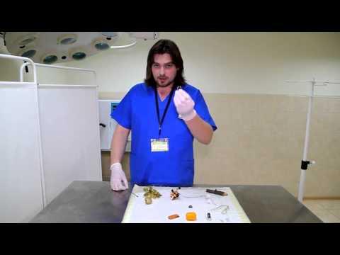 Детский анализ на яйца гельминтов