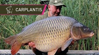 50lb Carp At Carplantis With Steve Briggs