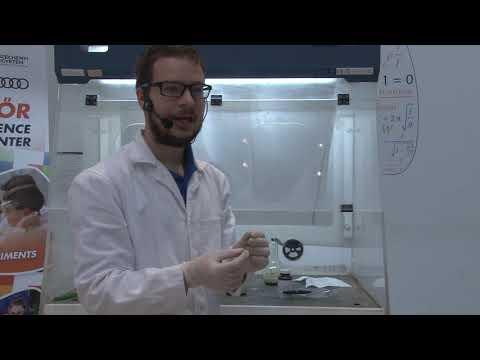 Bacterfort összetétele