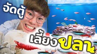"""ถึงเวลาจัดตู้ปลา!! ที่สร้างจากจิตนาการของทุกคน """"มุมใหม่ในห้องเลี้ยงสัตว์"""""""