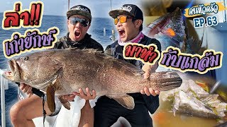 ล่าปลาเก๋ายักษ์ มาทำกับแกล้ม!!! [หัวครัวทัวร์ริ่ง] EP.63