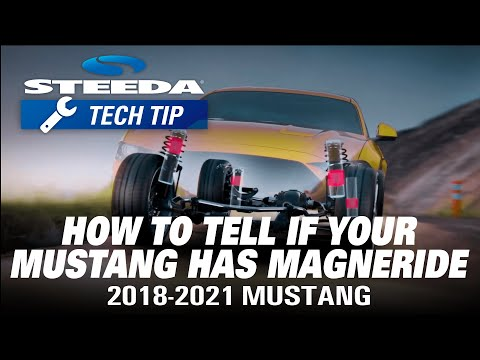 How To Check If Your Mustang Has MagneRide | Steeda Tech Tip