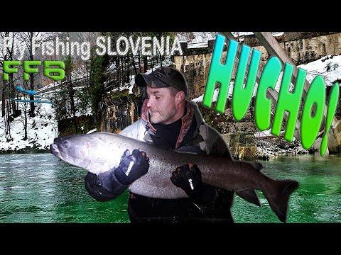Hucho-Hucho Flyfishing Masterclass Catch! 2021 season