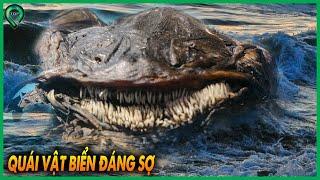 Nếu Gặp 10 Loài Cá Này Thì Hãy Bơi Thật Nhanh Vì Chúng Có Thể Nuốt Chửng Bạn Trong 1 Nốt Nhạc | Top