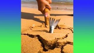 วิธีหาปลาแบบใหม่ที่ง่ายเกินกว่าที่คุณคิดสะอีก (รวมคลิปความพึงพอใจ)