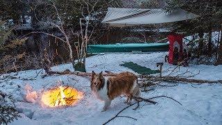 Overnight Wild River Adventure with My Dog