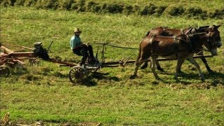 Pennsylvania's Amish Country