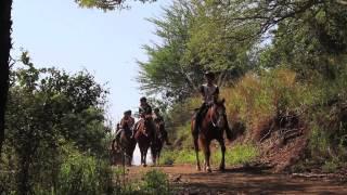 Kualoa Ranch Horseback riding tour
