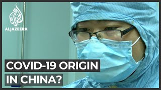 WHO virus investigation: Agency to trace COVID-19 origin in China