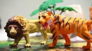 Đồ chơi động vật hoang dã cho bé, kèm bản đồ - Toycity (Con Cưng)