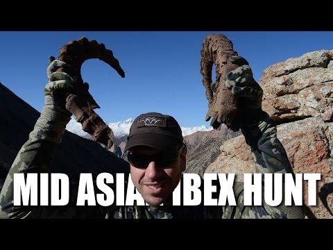 Mid Asian Ibex Hunt
