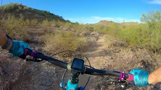 Fun little side trail to T100, this is Rocky Ridge North heading east towards Cave Creek Rd.