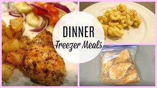 FILL YOUR FREEZER CHALLENGE~ DINNER