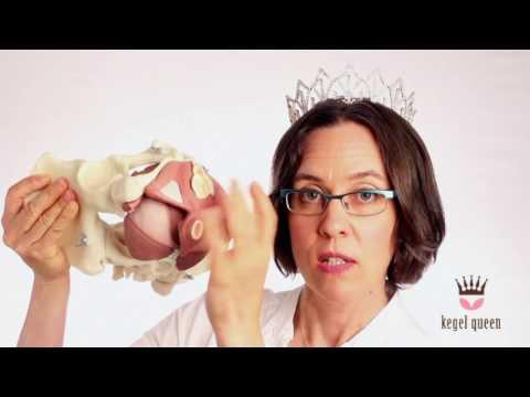 Artezin a prosztatagyulladás felülvizsgálatához
