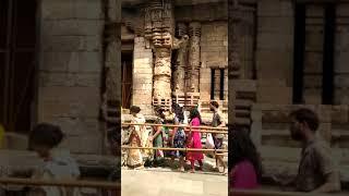 Devotees celebrate Maha Shivaratri across Odisha