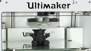 Fuzzy Bear 3D Printed with PLA Flexible - Ultimaker: 3D Printing Timelapse