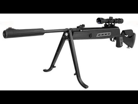 Can I Rifle Hunt On My Own Property