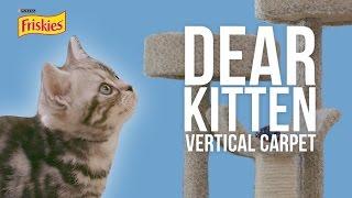 Dear Kitten: The Vertical Carpet