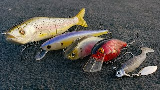 Top 5 Baits For Early Spring Bass Fishing! ( How To Fish Them )