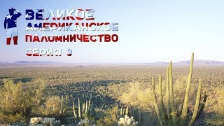 Великое американское паломничество. Серия 3 Финикс и Темпе, Аризона