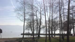 スイス発 ツーク湖畔の公園【スイス情報.com】