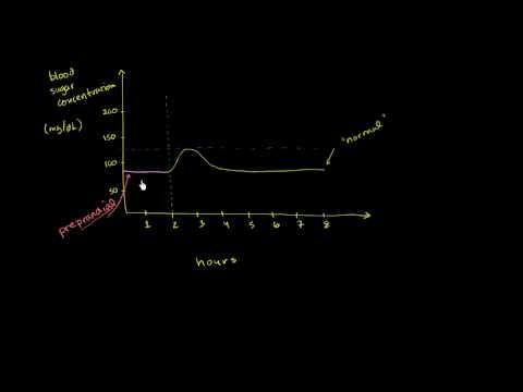 Inzulínová pumpa a jeho cena