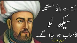 Ghazali Learn Five Habits From Dog Inspirational Quotes Elmi Quotes