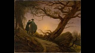 Schubert String Quintet in C D. 956 Hagen Quartet/Heinrich Schiff