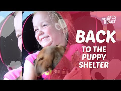 Sisters Upset After Leaving Puppy at Animal Shelter