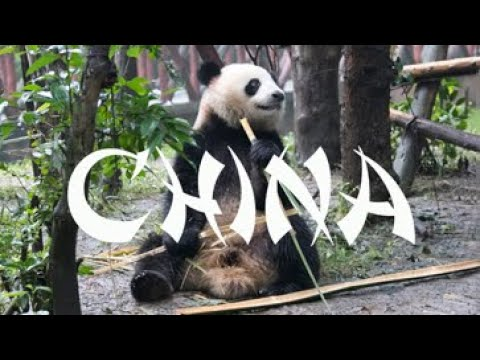 China 2018 Family Trip Video – Shanghai, Beijing, Xi'an, Chengdu, Yangshuo, Hong Kong, Disney!