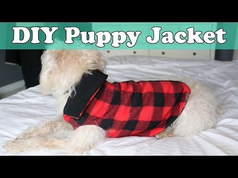 Quick And Easy DIY Puppy Jacket / Coat