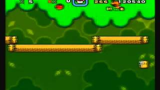 Forest Of Illusion 1 - 258 (Normal Exit, Get Yoshi)