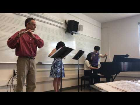 Grand Trio Kuhlau Opus 119 with two flutes