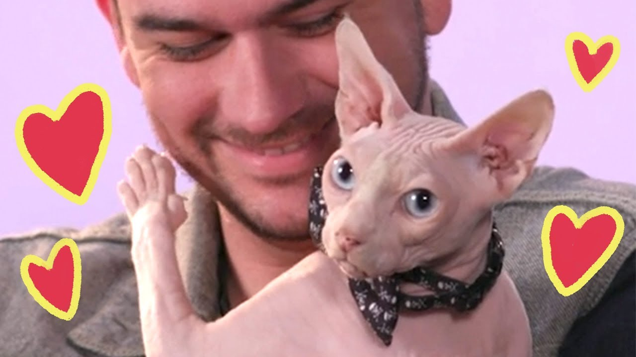 Dudes Get Real Mushy About Their Cats thumbnail