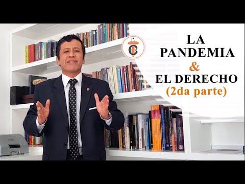 LA PANDEMIA £ EL DERECHO (Parte 2) - Tribuna Constitucional 135 - Guido Aguila Grados