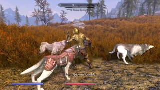 Skyrim PS4 Mod: Wolf Pack