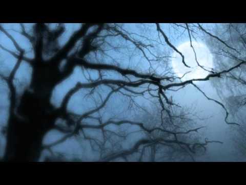 Philip Wesley - Dark night of the soul
