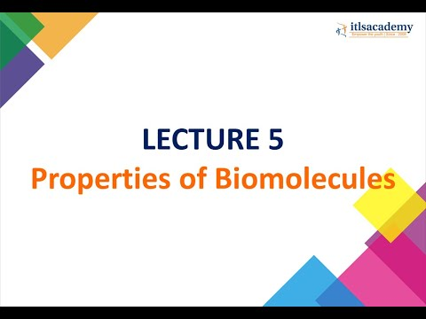PROPERTIES OF BIO-MOLECULES