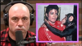 Joe Rogan on Michael Jackson's Weirdness