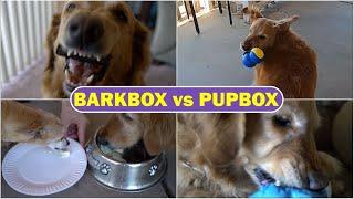 BarkBox and PupBox Reviewed: Testing Dog Box Services