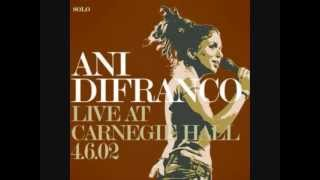 "Ani DiFranco ""The Million You Never Made"" lyrics"