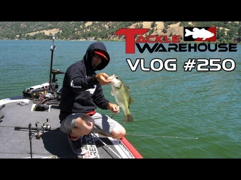 "Fishing Clear Lake with Michael ""Ike"" Iaconelli Part 2 – Tackle Warehouse VLOG #250"