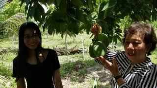 preview picture of video 'Rim's farm 02'