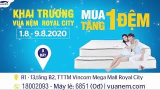 Edit Video Phục Vụ Cho Youtube, Tiktok, Facebookintro Logo, TVC Quảng Cáo
