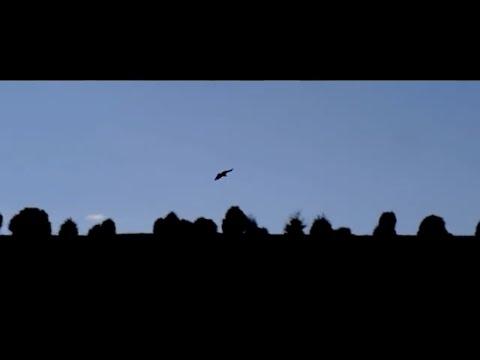 """""""Morna"""" , Proyecto Entremares (videoclip oficial)..."""